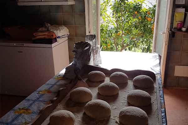impasto pane di casa